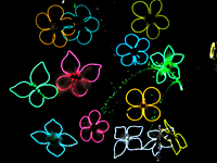 EL Wire flowers for night time glow from Keira's Favorite
