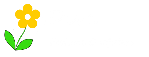 Diva Bella Festival Outfitters HOME